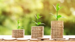 Diversificazione del portafoglio con investimenti alternativi: Arte, Agricoltura, Vino