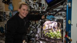 Attenzione Astronauti. I Ravanelli freschi sono ora nel menu