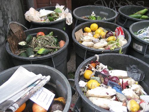 Portare fuori la spazzatura: 3 miti • Sustainablog