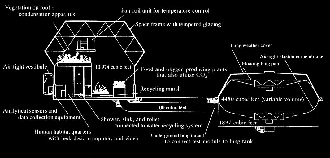 http://www.nicoland.it/wp-content/uploads/2021/01/1611826068_125_Spazio-e-sostenibilita-come-le-lezioni-di-Biosphere-2-hanno.jpg