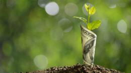 Perché la diversificazione del portafoglio è fondamentale
